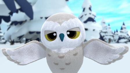 Watch Snowy Owl Needs Some Sleep!. Episode 6 of Season 2.